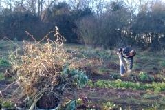 Garten Arbeit auch im Winter nötig