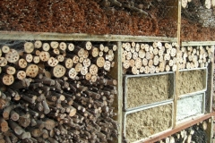 Insektenhotel im Rüttihubelbad