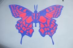 Schmetterling auf der Haube