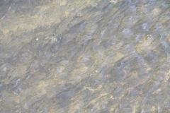 Wasser-Fotos von der Gersprenz
