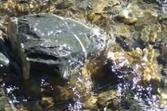 Wasse & Steine der Engstlingen